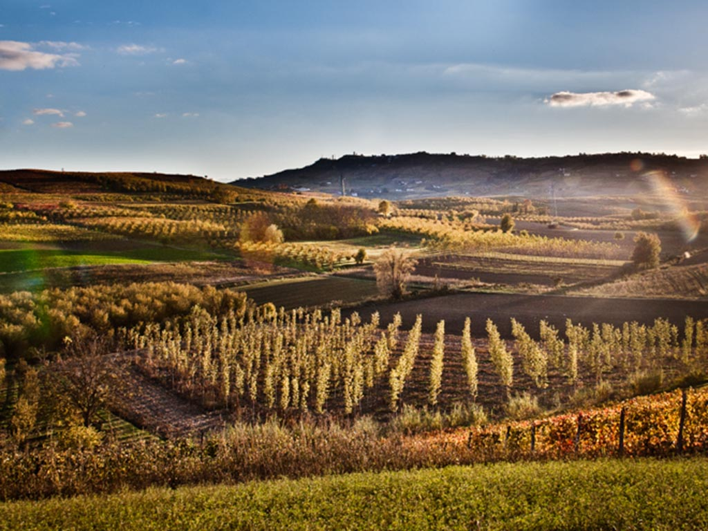 Photo of Nono Festival del paesaggio: astigiano terra di fossili e vino