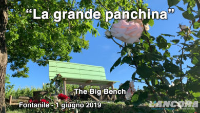 Photo of Fontanile – La grande panchina verde (VIDEO)