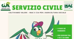 locandina Cia servizio civile