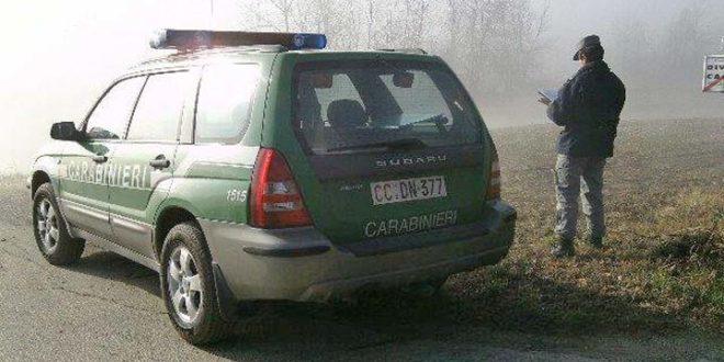 Carabinieri, forestale