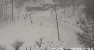 neve (foto di Caterina Barigione)