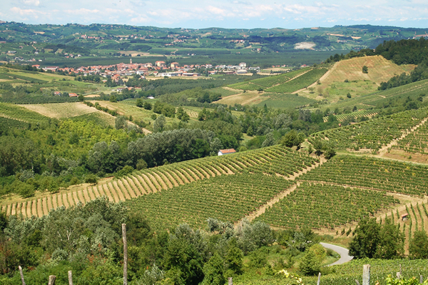 Territorio di Rivalta