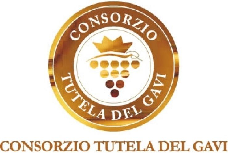 logo consorzio tutela del Gavi
