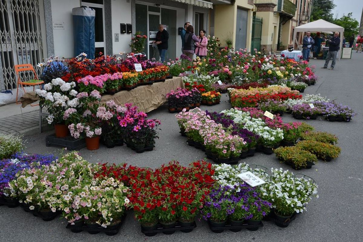 Montaldo Bda: Flora & Bacco
