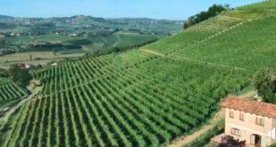 Buon compleanno paesaggi vitivinicoli Unesco!