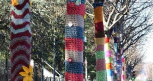 Alberi decorati per Giro Rosa