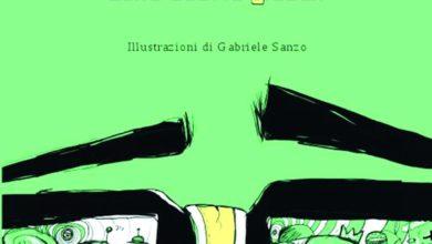 copertina libro di Fulvio Gatti