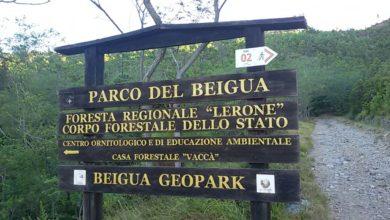 Photo of Parco del Beigua: annullato il programma delle attività di novembre