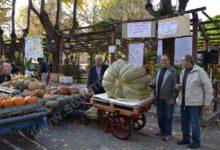 Bubbio, prepara ultracentenaria fiera di San Simone