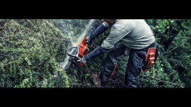 Photo of Maranzana, in reg.Ghiare il Comune libera la strada dagli alberi caduti