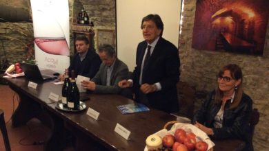 Photo of Il Brachetto punta all'innovazione