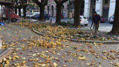 Foglie d'autunno...