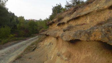 Una volta c'era il mare dalle parti di Cassinelle: il progetto del biologo Mariano Peruzzo