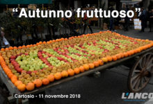 Cartosio - Autunno fruttuoso 2018 (VIDEO)