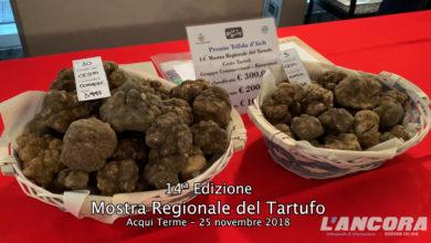 Acqui Terme - 14ª edizione Mostra regionale del Tartufo (VIDEO)