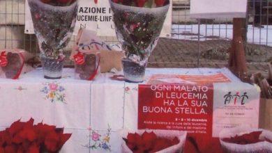 Photo of Le stelle di Natale dell'AIL