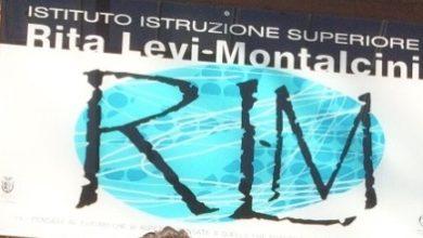 logo istituto Montalcini