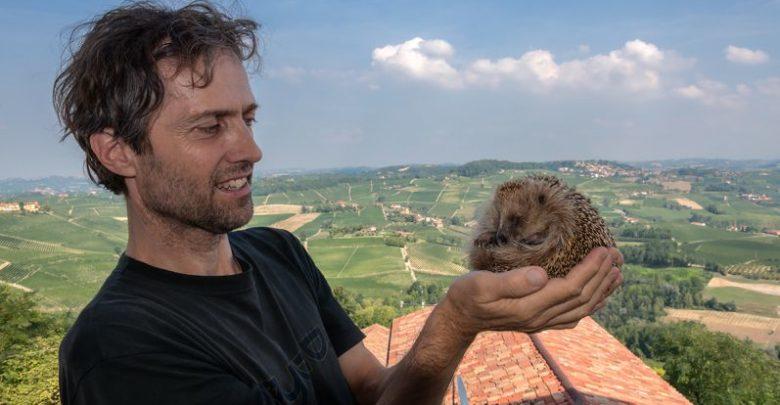 Massimo Vacchetta veterinario