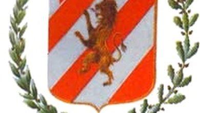 Mombaruzzo stemma