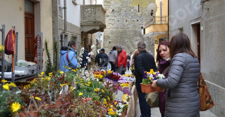 """Cartosio alla grande 5ª """"Primavera fruttuosa 2019"""" festa dei frutti antichi e degli innesti in piazza"""