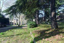 Gestione ecosostenibile delle erbe infestanti in ambito urbano