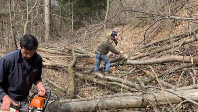 Rossiglione, pulizia boschi