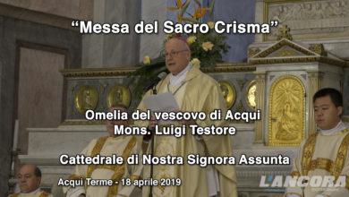 Messa del Sacro Crisma 2019, l'Omelia