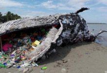Photo of Unicef raccoglie firme contro la plastica