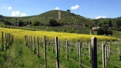 """Photo of """"Passeggiata Slow"""" in valle Bagnario: domenica la 18ª edizione"""