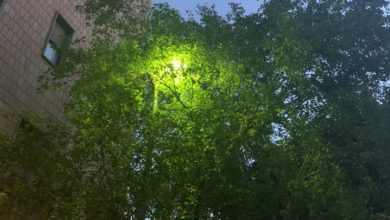 """Il """"verde illuminato"""""""
