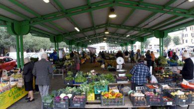 Photo of Il maltempo fa aumentare i prezzi delle verdure al dettaglio: +7%