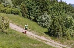Avil Trail Liguria