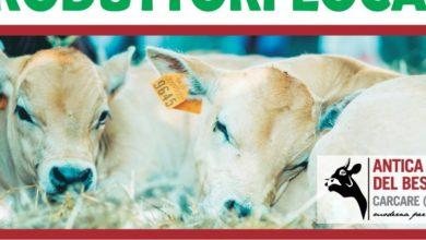 Carcare, sabato 1° giugno si è svolta la presentazione dell'edizione 2019 dell'Antica Fiera del Bestiame