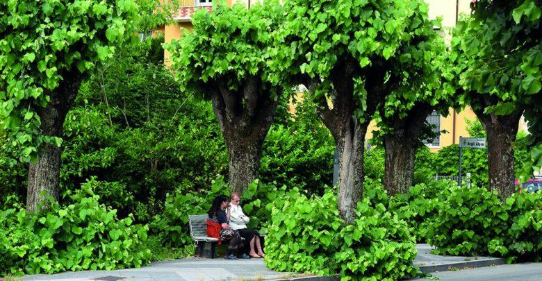 In zona Bagni… immersi nel verde