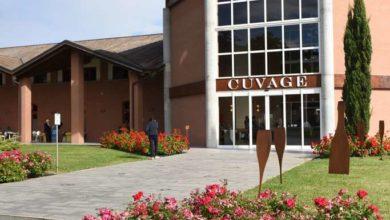 Photo of Cuvage: grande successo