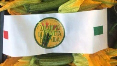 Photo of Rivalta B.da: la fiera patronale di San Domenico