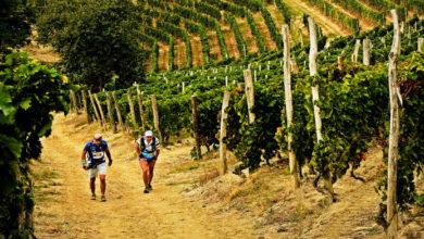 """Photo of Podismo: 8º """"Trail del Moscato"""""""