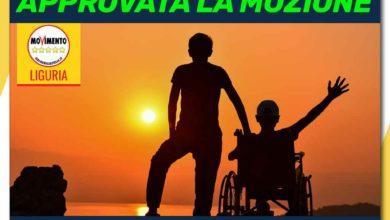 """Photo of Anagrafe digitale delle persone disabili, Tosi (M5S): """"Approvata all'unanimità la nostra mozione…"""""""