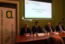 Photo of Confagricoltura: il settore primario è strategico per lo sviluppo dell'economia