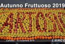 """Photo of Cartosio, """"Autunno Fruttuoso"""", 5ª Festa autunnale dei frutti antichi e degli innesti (video)"""