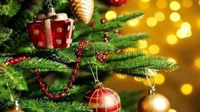 Photo of Prima di uscire di casa, spegnere le luci dell'albero di Natale