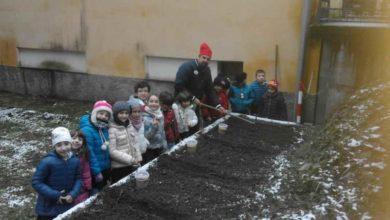 Photo of Rossiglione: i bambini della primaria seminano cereali