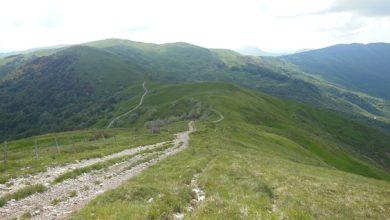 Photo of Escursione con le ciaspole
