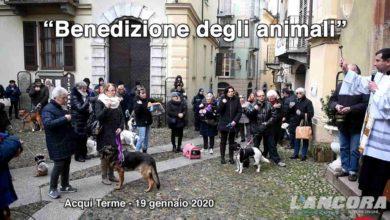 Photo of Acqui Terme – Benedizione degli animali 2020 (VIDEO)