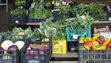 Photo of Confagricoltura: cala lo spreco alimentare, ma bisogna tenere alta l'attenzione