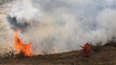 Photo of Stato di massima pericolosità incendi boschivi su tutto il territorio del Piemonte dal 6 febbraio