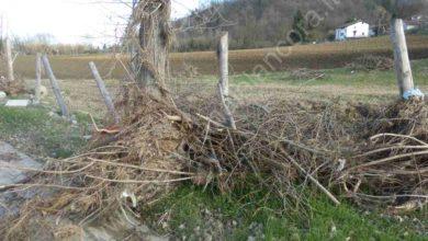 Photo of I danni alla pista ciclabile