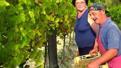Photo of Bubbio, buon compleanno a Marco Cresta, la persona con sindrome Down più longeva d'Italia