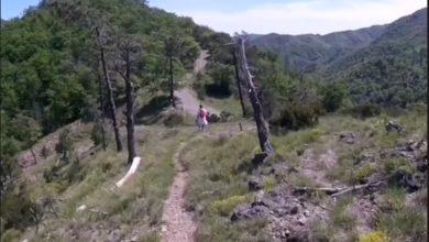 """Photo of Progetto """"Roadsiglione"""" per rilanciare il territorio"""