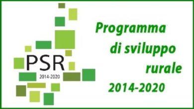 Photo of Si progetta il nuovo PSR del Piemonte